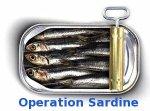 sardinesop